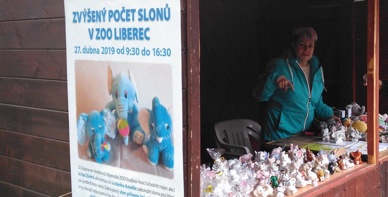 prodej-slonů-na-podporu-služeb-Zoo-